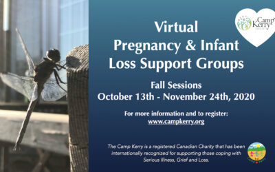 Virtual Pregnancy and Infant Loss Support Groups