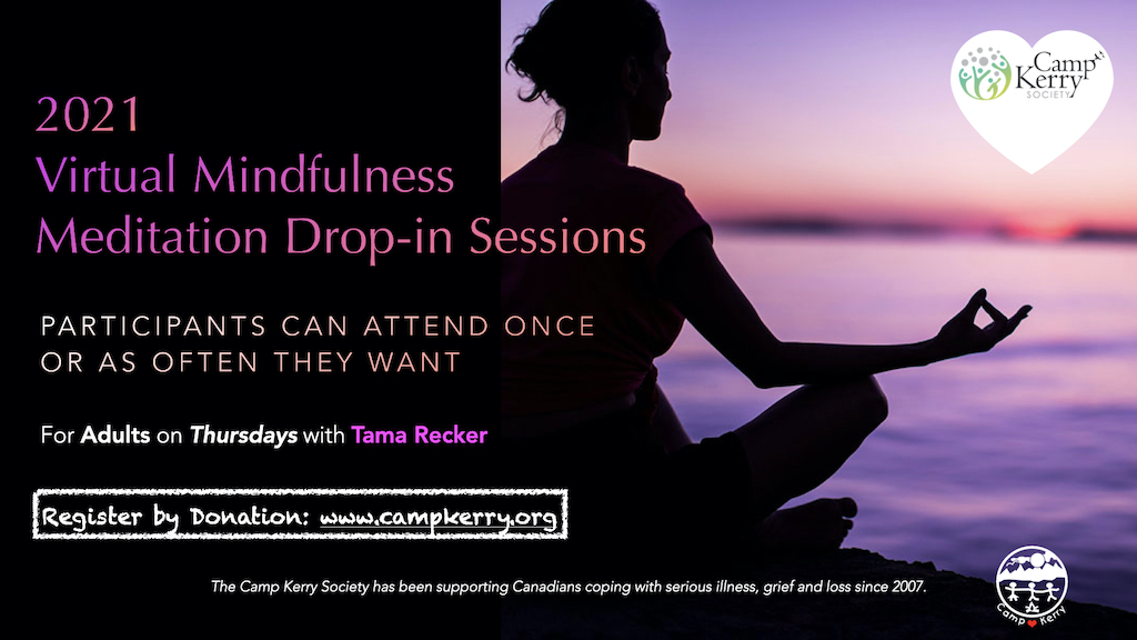 Virtual Mindfulness Meditation Drop-in